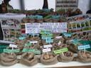 Agrarprodukte Kleinbauern Bolivien
